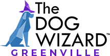 Greenville Dog Wizard Logo